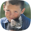 Young boy and kitten